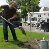 jon van eerd plant notenboom bij mammaloewagen buitengoed de gaard leudal