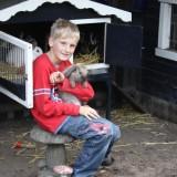 knuffelen met konijnen kinderboerderij buitengoed de gaard