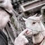 maurice hermans met geit buitengoed de gaard foto wilma jac breunissen