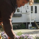 'snow chrystal' tulpen geplant door sander janson bij pipowagendeluxe buitengoed de gaard