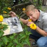 tony neef bezoekt zijn sonnebloem 'langs het tuinpad van mijn vader' bij vierseizoenenhuisje buitengoed de gaard 12-07-2015