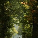 wandelen in leudal midden-limburg