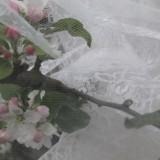 pipowagen huwelijksreis in lente buitengoed de gaard