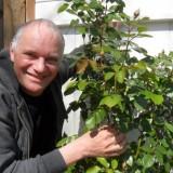 arie cupé, tegenspeler van willeke als de mop in 'de jantjes', regisseert de groei van de spiegelbeeld rozen van willeke alberti bij buitengoed de gaard