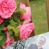 maurice hermans plantte voor ouders rietje en toon hermans een mooie roos in 't graas van de wei bij buitengoed de gaard