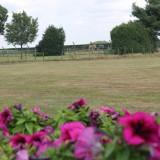wellness in het weiland met grazende paarden als buren en blauwe bessen velden als uitzicht relaxen voor gasten van buitengoed de gaard